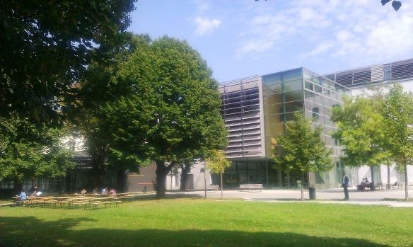 MCW Courtyard